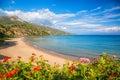 Panorama of Porto Zorro beach against colorful flowers on Zakynthos island, Greece Royalty Free Stock Photo