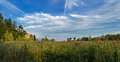 Panorama in the reeds reed bed italy verbania lake maggiore Stock Photography