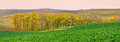 Panorama of south moravia autumn fields with a trees. Royalty Free Stock Photo