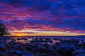 Panorama of stony coast of Baltic sea by sunset Royalty Free Stock Photo