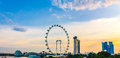 Panorama view of Marina Bay. High view of Singapore Flyer Royalty Free Stock Photo