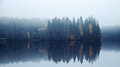 Panoramic autumnal landscape with threes on a coast blue toned photo fog and still lake Royalty Free Stock Photo