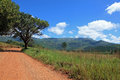 Panoramic Route in South Africa Royalty Free Stock Photos