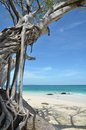 Panoramic tropical beach with sand Royalty Free Stock Photography