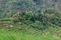 Panoramic view of the Batad rice field terraces in Ifugao province, Banaue, Philippines Royalty Free Stock Photo