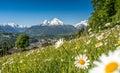 De en Alpes flores y famoso