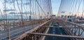 Panoramic View Of Brooklyn Bri...