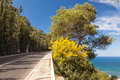 Panoramic view of mountain road with trees cloudy sky and meddi medditerian sea on the background Stock Image