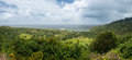 Panoramic view of taro fields near Keanae in Maui Royalty Free Stock Photo
