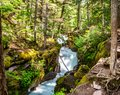 Panoramic View of Upper Avalanche Gorge GNP Royalty Free Stock Photo