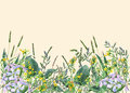 Panoramic view of wild meadow flowers and grass on yellow background.