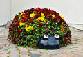 Pansy flowerbed ladybird funny decorative in a shape of Royalty Free Stock Photo