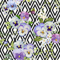 Pansy flowers geometric background Immagine Stock Libera da Diritti