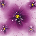 Pansy flowers on the greeting card Stock Image