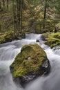 Panther Creek Falls in Washington State Royalty Free Stock Photo