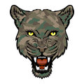 Panther a head logo this is vector illustration ideal for a mascot and tattoo or t shirt graphic Stock Photos