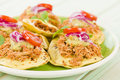 Panuchos mexican corn tortillas filled with refried beans and topped with shredded chicken guacamole pickled red onions and tomato Royalty Free Stock Photo
