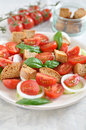 Panzanella healthy italian bread salad Stock Photography
