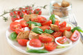 Panzanella healthy italian bread salad Royalty Free Stock Photos