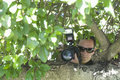 Paparazzi photographer behind tree closeup of a hiding Royalty Free Stock Photo