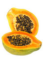 Papaya (Carica papaya) Stock Images