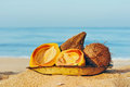 Papaya and coconuts on the leaves plate on the sandy beach in goa Royalty Free Stock Photo