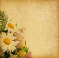 Paper background with flowers Stock Images