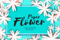 Paper cut flower greeting card. Rectangle frame