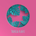 Paper cut out round frame with abstract summer background with paper cut tropical leaves, exotic floral design for banner, flyer