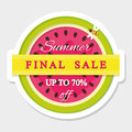 Paper cut out sticker final summer sale. Watermelon icon. Royalty Free Stock Photo