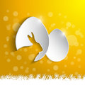 Paper eggs with shadow effect card Royalty Free Stock Image