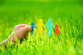 Paper family in hand over spring green grass ecology concept Stock Photography