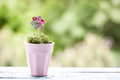 Paper flower in a pot on green background Stock Photo