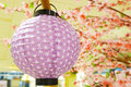 Paper lantern decoration in japanese style Royalty Free Stock Photography