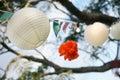 Image : Paper lanterns