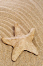 Paper-mache seastar on the sand Royalty Free Stock Photos