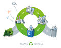 Paper Recycling Cycle Illustra...