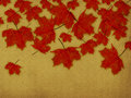 Paper with red leaves Royalty Free Stock Images