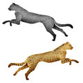 Papercut Leopard made from Recycled Paper Royalty Free Stock Images