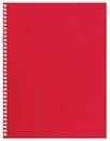 Papier de note rouge feuille simple de texture déchirée vide de fond de carnet de cahier d isolement Photographie stock