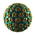 Papilloma Virus - HPV - isolated on white Royalty Free Stock Photo