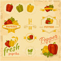 Paprika pepper vegetables product label packaging design Royalty Free Stock Photo