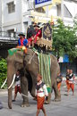 Parade of elephants to the morning banquet in the city surin in thailand picture taken in nov Stock Photo