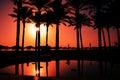 Paradijszonsopgang op palm beach Royalty-vrije Stock Afbeeldingen