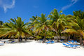 Paradise beach with palms and sunbeds Stock Photos