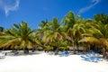 Paradise beach with palms and sunbeds Stock Photos
