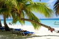 Paradise beach at saona island dominican republic Stock Images