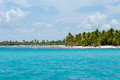 Paradise beach at saona island dominican republic Royalty Free Stock Images
