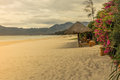 Paradise beach in the south china sea vietnam Royalty Free Stock Photography