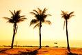 Paradise beach sunset Royalty Free Stock Photo